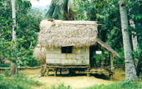 Nipa Hut Drawing http://www.build-it-yourself.com/john/johng